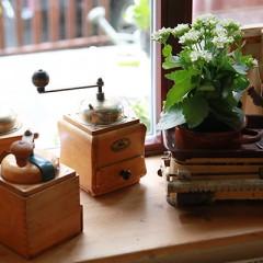 Kaffemühle in Omas Küche